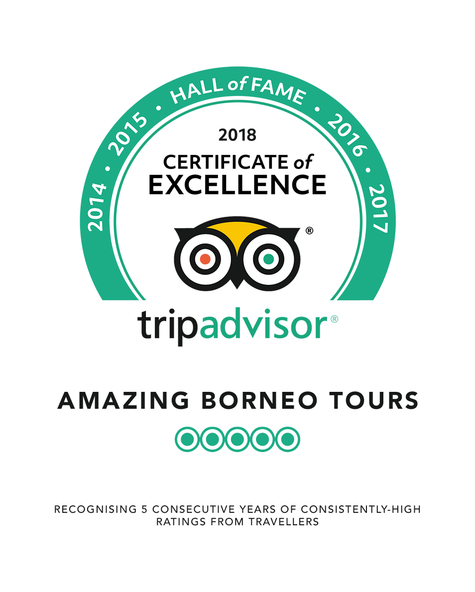 TripAdvisor Awards Certificate of Excellence Hall of Fame 2018