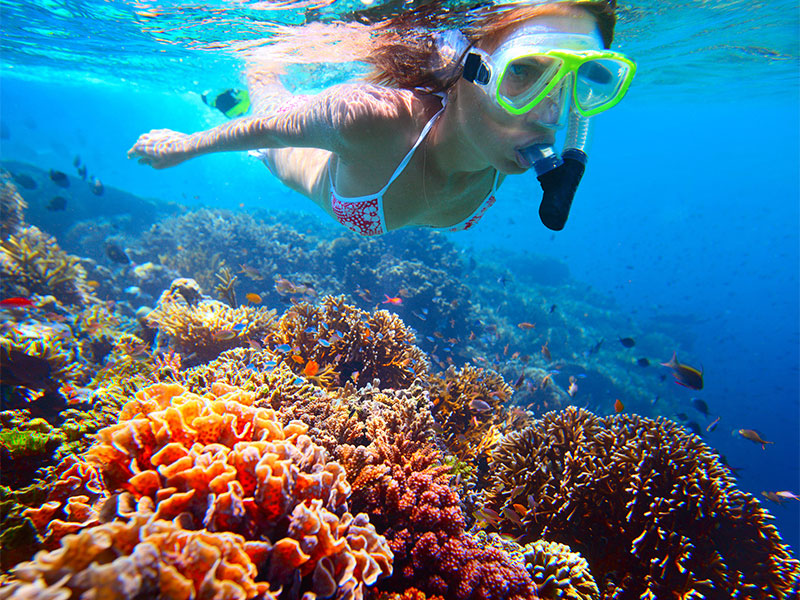 Fun Boat Snorkeling Special Rate