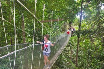A Journey Through Sabah 10 Days: Amazing Borneo Tours