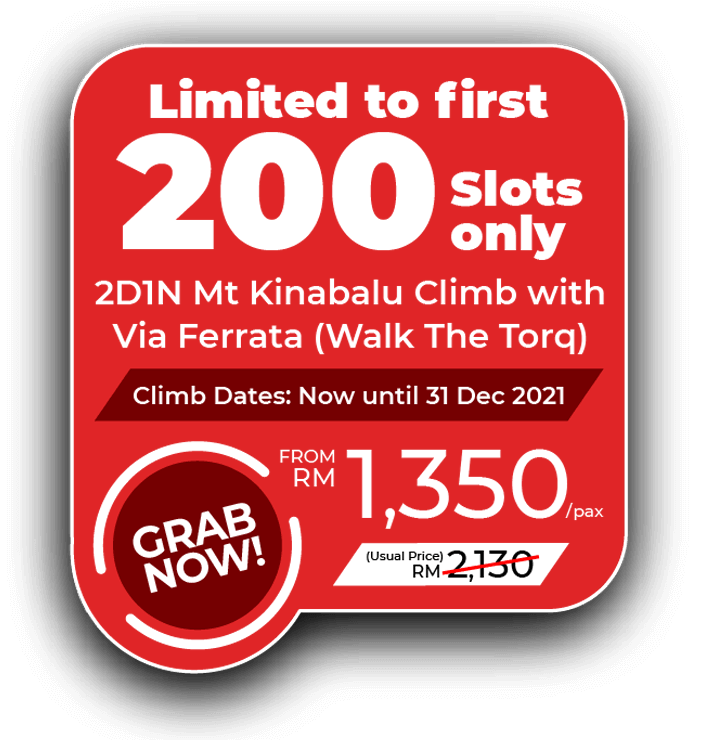 Mount Kinabalu Climb with Via Ferrata Walk The Torq Promo 2021 - Price from MYR1350
