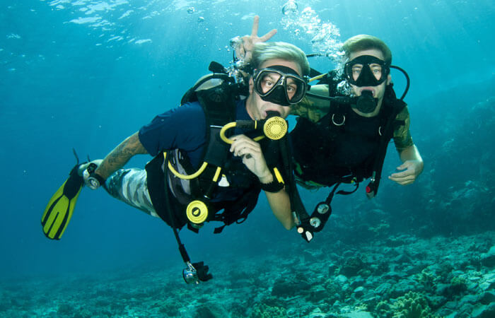 PADI Diving Courses and Sea adventures