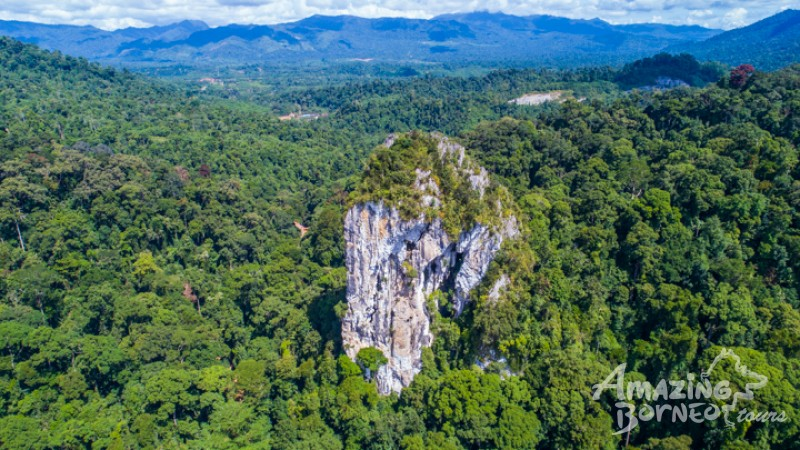 Batu Punggul is an impressive stand alone limestone rock rising out from the Jungle