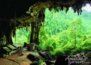 2D1N Mulu Show Caves & Park HQ Stay