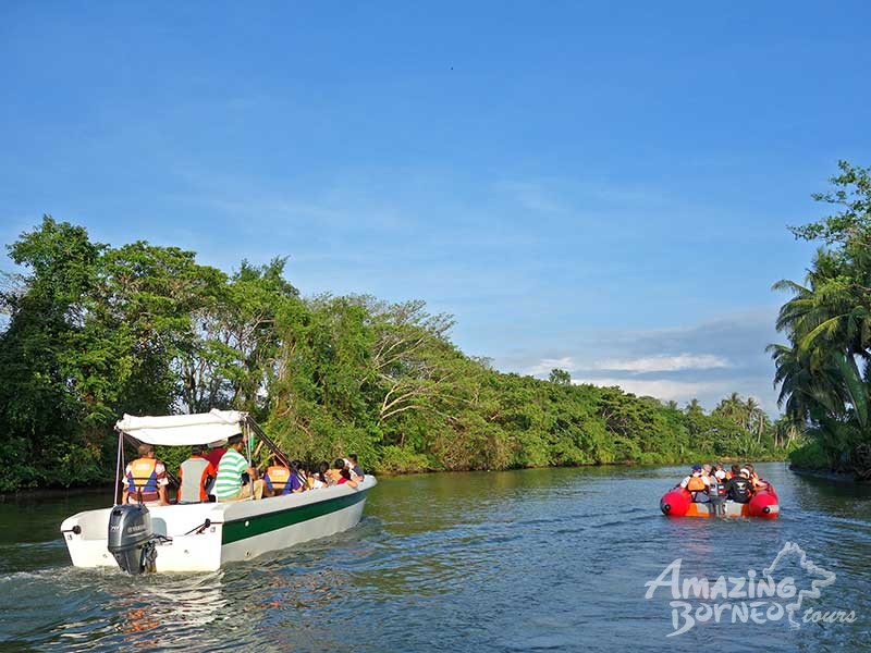 Kawa Kawa River Cruise - Wildlife & Fireflies - Amazing Borneo Tours