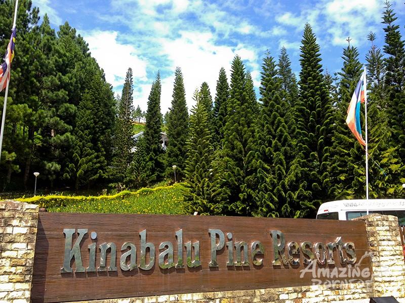 Kinabalu Pine Resort Amazing Borneo Tours