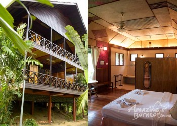 3D2N Sepilok Nature Resort Stay & Tour