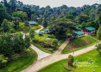 4D3N Danum Valley Field Centre - Nature Lover Experience (Budget)