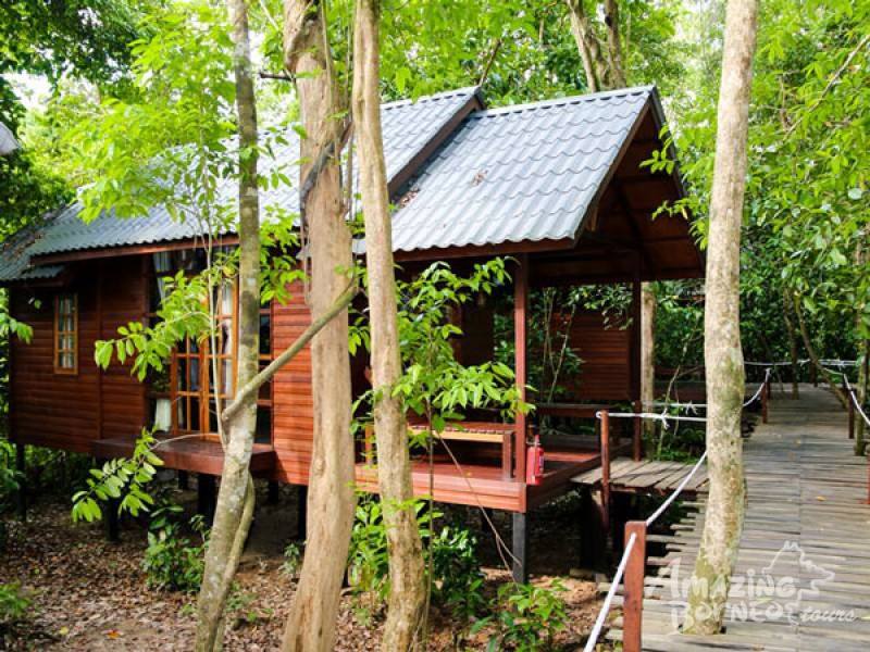 3D2N BORNEO NATURAL SUKAU BILIT RESORT - KINABATANGAN RIVER CRUISES & JUNGLE WALK (BUDGET) - Amazing Borneo Tours