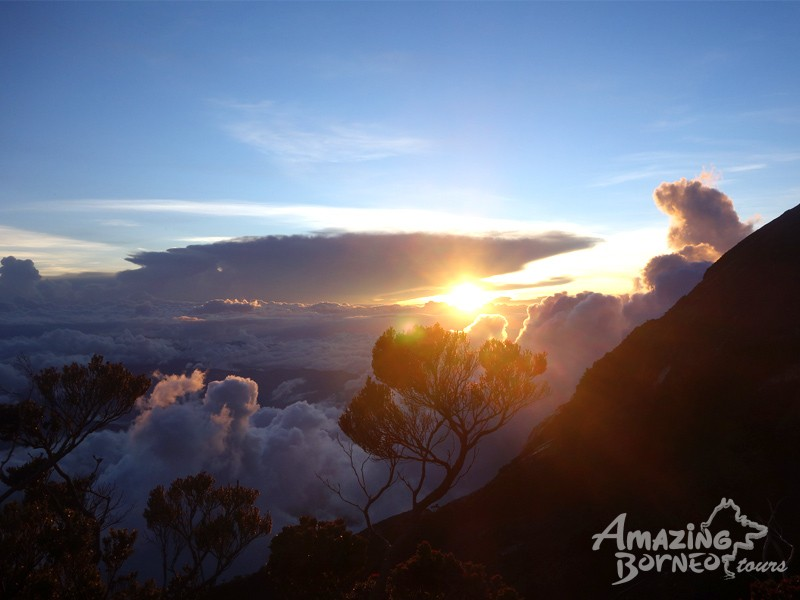 3D2N Mount Kinabalu Climb & Kinabalu Park Stay (Private Room) - Amazing Borneo Tours