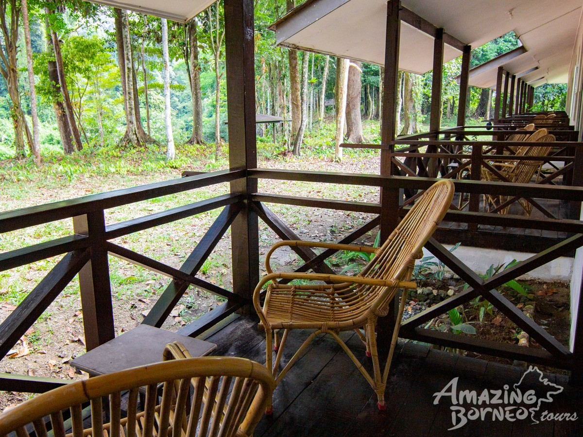 3D2N Kawag Nature Lodge - Borneo Rainforest Wildlife Explorer - Amazing Borneo Tours