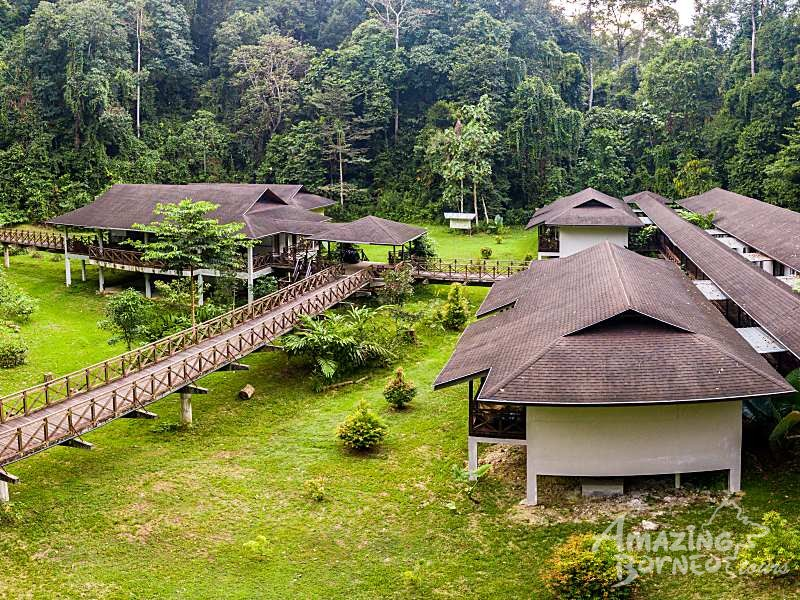 4D3N Kawag Nature Lodge - Borneo Rainforest Wildlife Adventures - Amazing Borneo Tours
