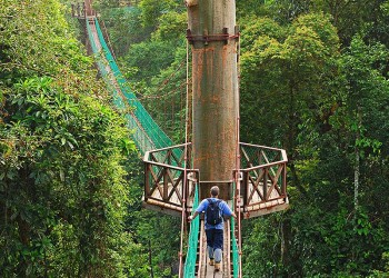 4D3N Borneo Rainforest Lodge - Danum Valley Rainforest Adventure