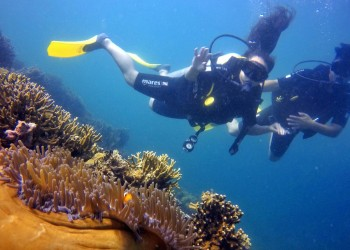 Scuba Diving Adventure (For Cert Diver)
