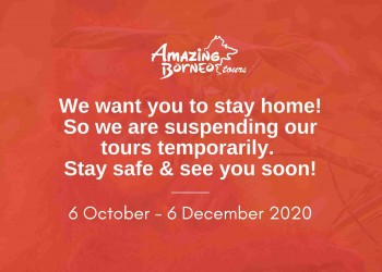 Important Announcement: Amazing Borneo Temporary Suspension of Tours