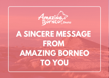 Sincere Message From Amazing Borneo To Amazing Travellers