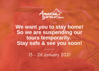 Amazing Borneo Temporary Suspension of Tours From 13 January - 26 January 2021
