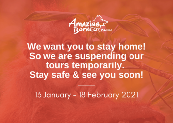 Amazing Borneo Temporary Suspension of Tours From 13 January - 18 February 2021