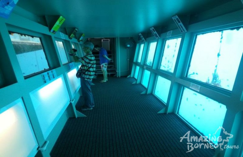 Borneo Reef World (Pontoon)